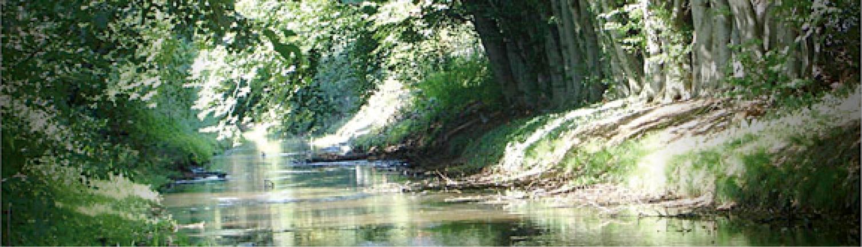 Gemeente Helmond: Gebiedsontwikkeling Goorloopzone